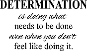 Determination is doing what needs to be done