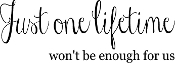 Just one lifetime won't be enough for us - vinyl decal