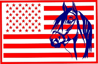 American Flag with horse head - truck, trailer, barn decal